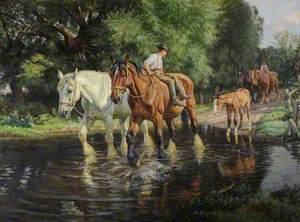 Farm Horses and Foal at a Ford