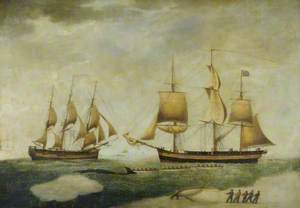 Whaling Barques 'Elizabeth' and 'Leviathan III'