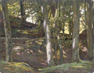 Woodland Scene on a Hill