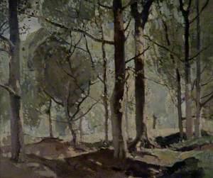Woodland Scene, Sussex