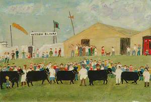 Royal Welsh Agricultural Society Show