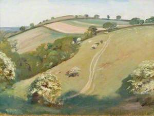 A View on Exmoor with Bushes in Blossom