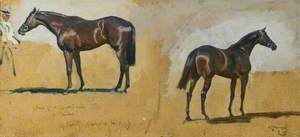 Two Studies of Mr George Lambton's Horse, 'Pricket'