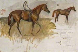Studies of Mr Rank's Horse, 'Strathspey', Winner of 1949 Cesarewitch