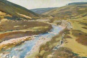 View of Exmoor with Stream