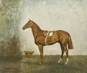 'High Stakes', Lord Astor's Horse