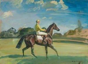 Study of a Yellow Jockey on My Mare, 'Irish Smock'