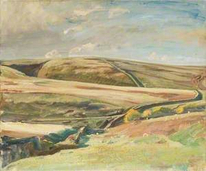 An Extensive View of Exmoor