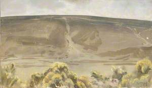 A View of Exmoor, Gorse Bushes in Foreground