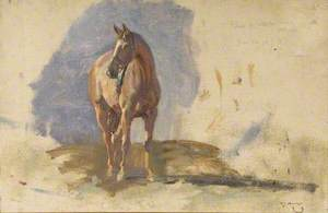 Study of a Bay Horse, 'Master', Bred by the Artist at Dedham
