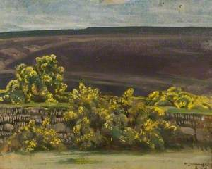 An Exmoor Landscape with Gorse
