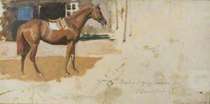 A Chestnut Racehorse Painted at George Lambton's Yard, Newmarket