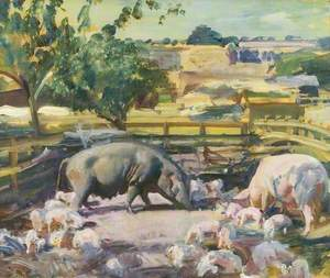 Sow and Pigs, Great Thurlow, Suffolk
