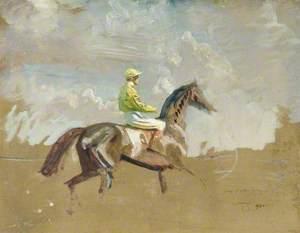 Study of the Yellow Jockey