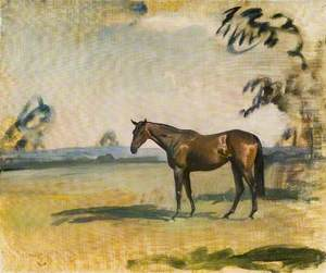A Dark Bay Horse in a Landscape