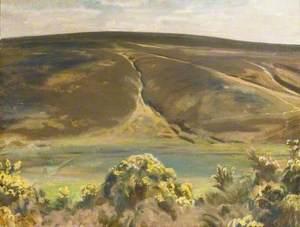 Mill Hill, Oar, Exmoor