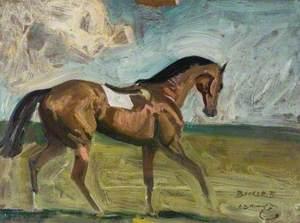 'Bunker II', a Bay Racehorse