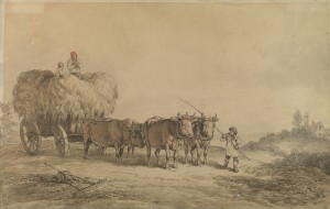 An Ox Wagon