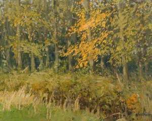 The Wood in Autumn