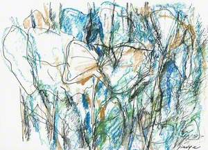 Lotus Sketch