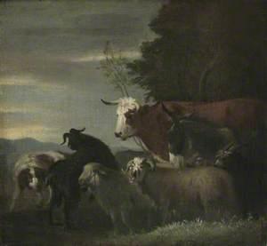 Donkey, Dog, Cow, Goat and Sheep