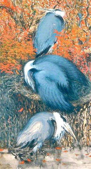 Battersea Park Herons