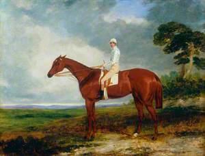 1844 Oaks Winner 'Princess', with Jockey