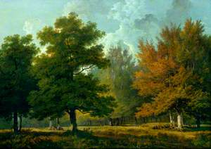 Landscape, Woodland Scene