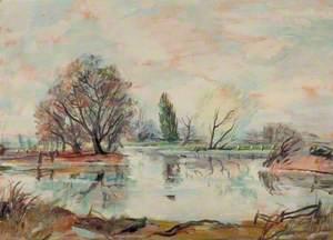 The Pond, Cornard