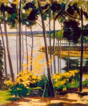Mimizan Lake
