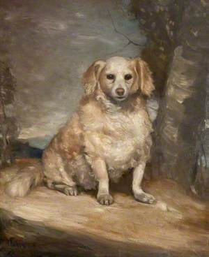 Old Dog Seated by a Tree