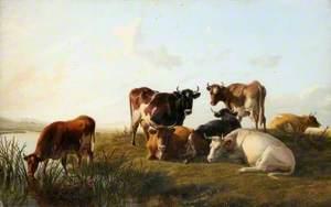 Canterbury Meadows