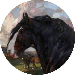'Baron of Buchlyvie' Horse Portrait