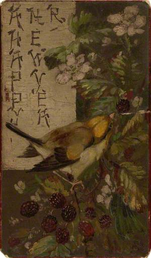 A Finch Picking at Blackberries