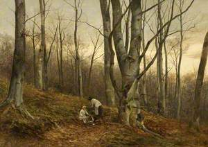 A Beech Wood, Malvern, Worcestershire