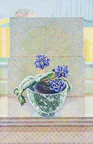 African Violet, 1981