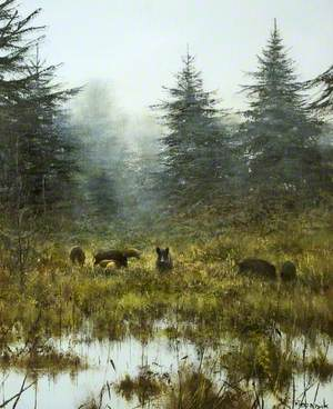 The Sounder (Wild Boar)