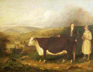 Mr Stanier and Herdsman with Hereford Heifer, with Buildwas Abbey and the Wrekin in the Background