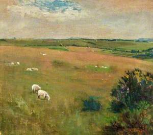 Wiltshire Downs, Martinsell