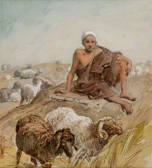 An Egyptian Shepherd