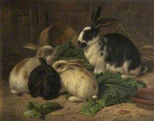 Four Rabbits