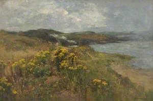 Coast near Deganwy, Conwy