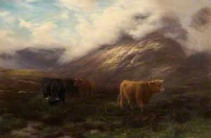 Highland Mists