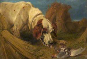Dog and a Dead Partridge
