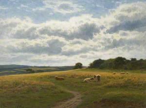 A Summer Day, Glan Conwy