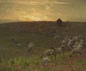 Sheepfold