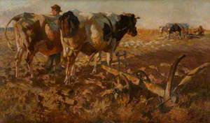 Cattle Ploughing in an Open Landscape