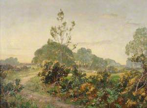 Selborne Common