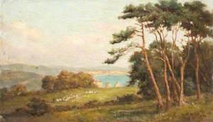 Alum Bay Seen from Headon Hill