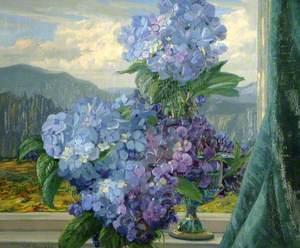 From a Lakeland Window: Hydrangeas